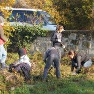 Plébániai kertszépítés – október 22.